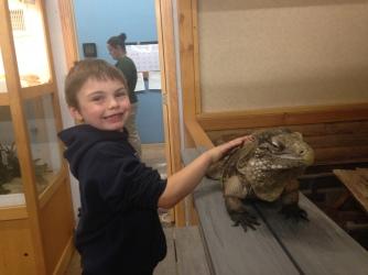 The iguana smiled almost bigger than Quinton